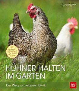 Hühner halten im Garten: Der Weg zum eigenen Bio-Ei -