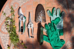 Gartenscheren werkzeug