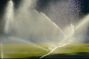 wasserpumpe bewässerung